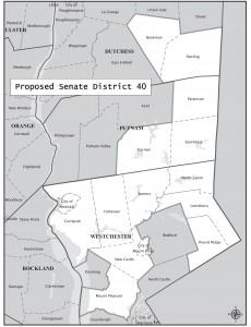 Proposed Senate District 40