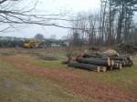 Parking, Landscaping Concerns Over New Armonk Park Proposals