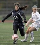 Bronxville Dynasty Continues at the Expense of the Bears