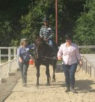 Horseback Riding Provides Disabled Children Important Therapy