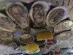One Dozen Oysters, Please