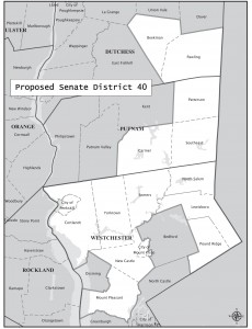 Proposed Senate District 40