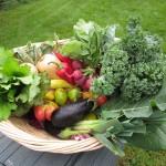 Produce from Hilltop Hanover Farm in Yorktown