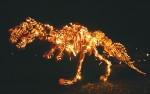 Great Jack O'Lantern Blaze Spooky Fun in Croton