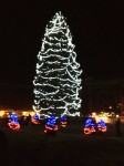 Local Brewster Non-Profits Work to Get Southeast Tree Lit
