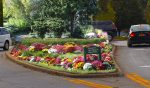 Mt. Kisco Looks to Beautify Village With Adopt an Area Program