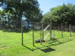 InterGenerate Opens New Co-operative Garden in Mount Kisco