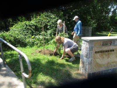 Serviceberry Honors Environmental Advocate Jim Gmelin