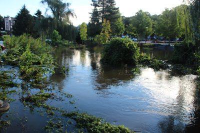 Flooded area from Hurricane Ida