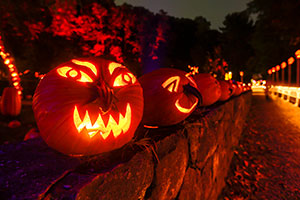 The Great Jack-O'-Lantern Blaze Returns This Month